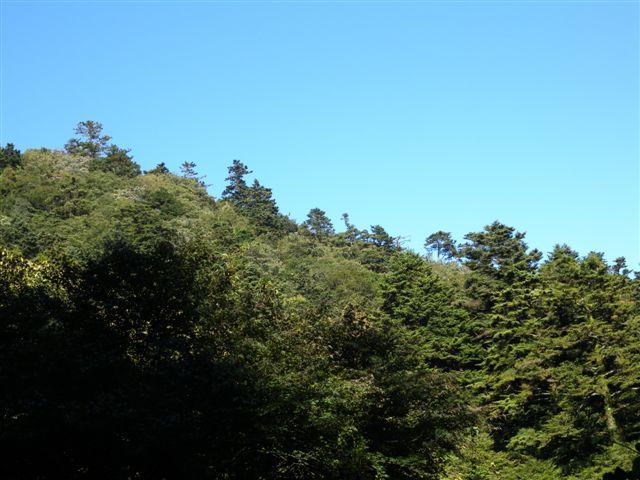 20091008-2.jpg