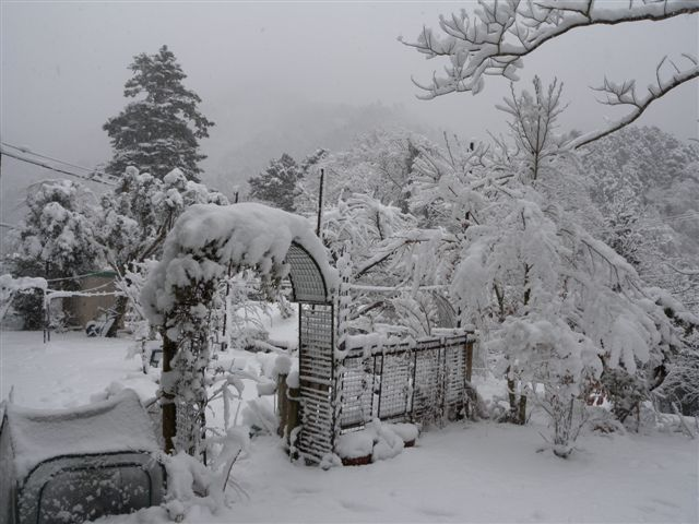 20120120-2.jpg