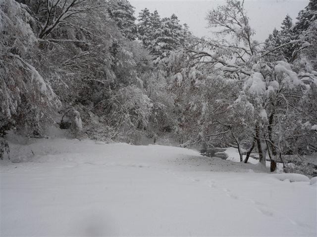 20120121-2.jpg